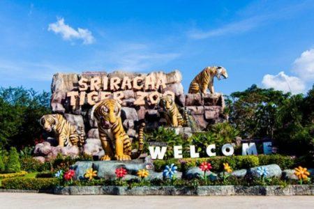 Giá vé tham quan thái lan và điểm thăm quan tại bangkok